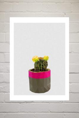 Studio Cockatoo Cactus 2 Wall Art Print - Assorted UK 3 at Urban Outfitters